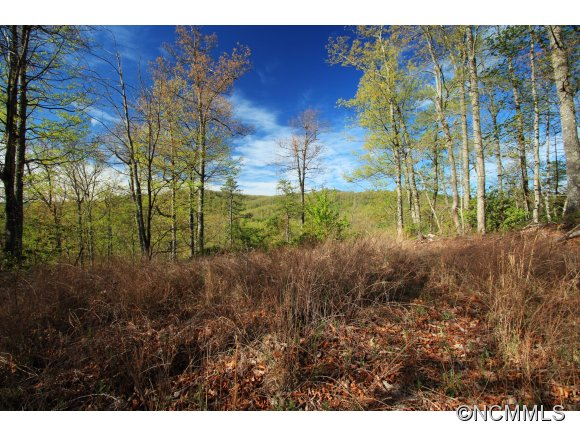 10 Red Maple Lane Pisgah Forest NC, 28768