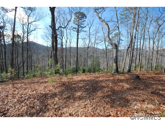 Lot 1 Mine Mountain Preserve Pisgah Forest NC, 28768