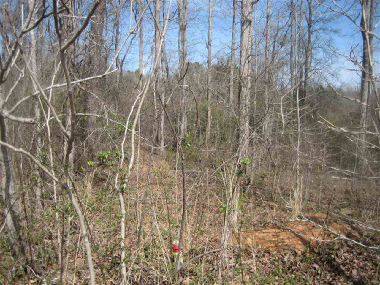 Lot 3 Brookside Dr Honea Path SC, 29654
